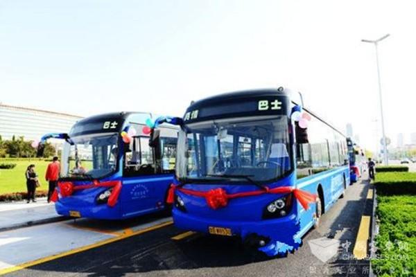 山東青島:又有一條公交線路開通了!還有這些線路和站點調整!