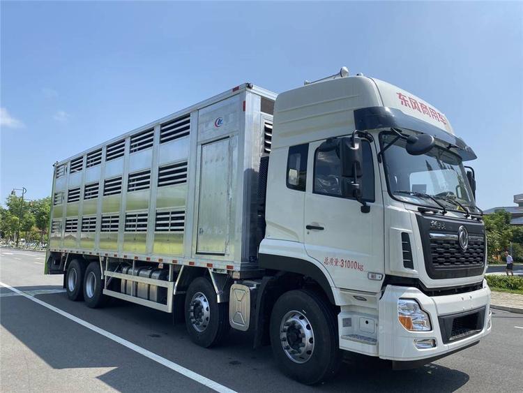 东风天龙大型猪苗运输车