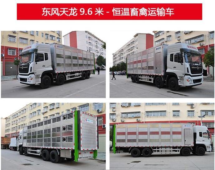 东风天锦6.8米全铝合金高端运猪车-东风天龙9.6米恒温运猪车